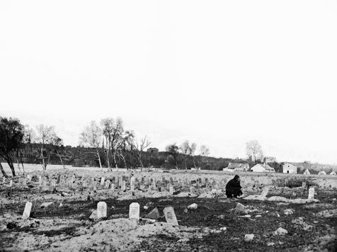 Belle Island Cemetery (LOC)